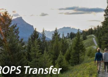 QROPS Transfer